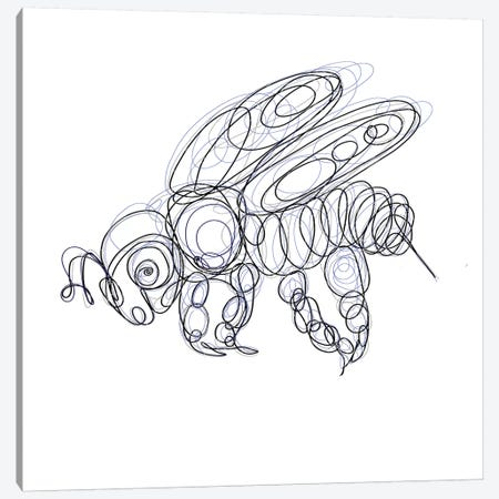 Honey Bee Line Drawing Canvas Print #OLE151} by OLena Art Canvas Print