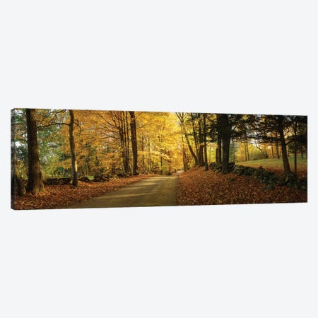 Countryside Road  Woodstock Vermont  Canvas Print #OLE163} by OLena Art Canvas Artwork