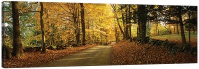 Countryside Road  Woodstock Vermont  Canvas Art Print