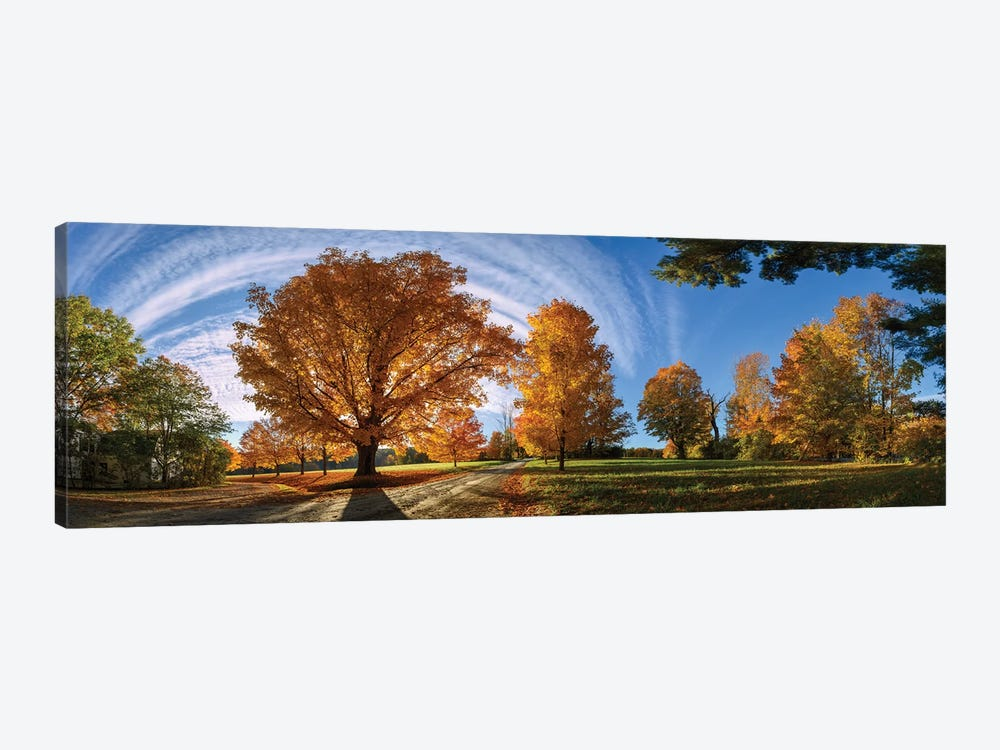At Countryside Rural Road New England by OLena Art 1-piece Canvas Art