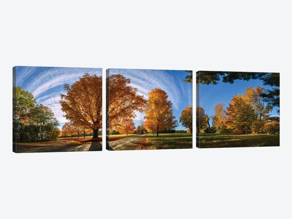 At Countryside Rural Road New England by OLena Art 3-piece Canvas Wall Art