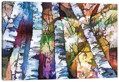 White Aspen And Birch Trees Canvas Art Print
