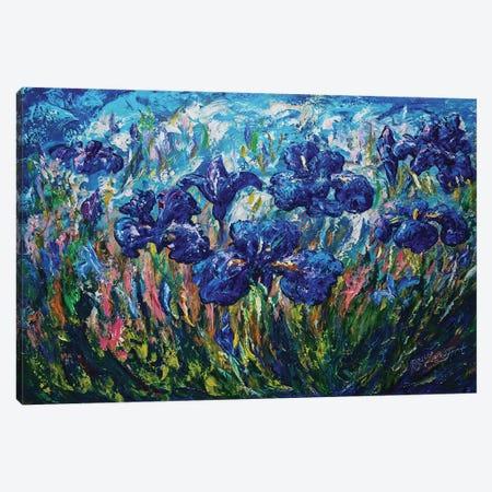 Countryside Irises Canvas Print #OLE16} by OLena Art Canvas Art Print