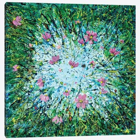 Cosmos Against The Sky Canvas Print #OLE211} by OLena Art Canvas Art