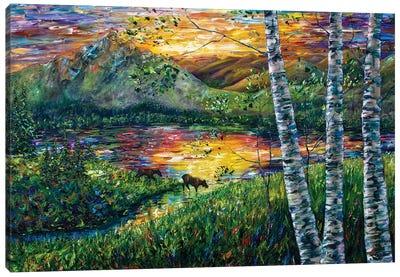 Sleeping Meadow - Colorado Moose Crossing Canvas Art Print