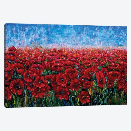 Field Of Happiness Canvas Print #OLE21} by OLena Art Art Print