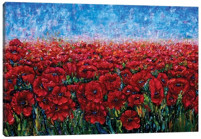 Field Of Happiness Canvas Art Print