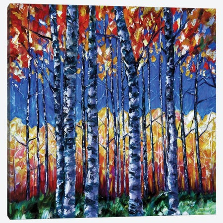 Aspen Trees Autumn Canopy Canvas Print #OLE220} by OLena Art Canvas Print