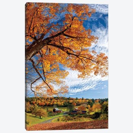 Sleepy Hollow Farm Vermont Autumn Canvas Print #OLE235} by OLena Art Art Print