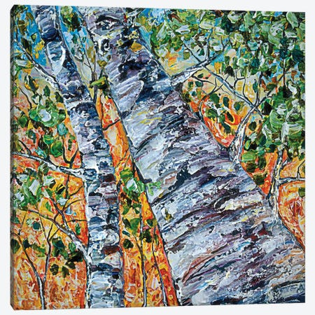 Birch In Spring Canvas Print #OLE9} by OLena Art Canvas Art