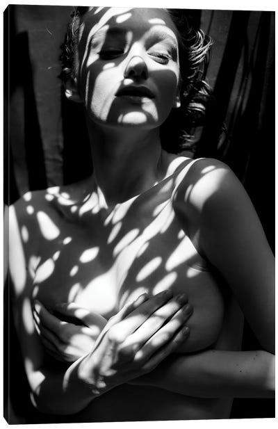 Romance With The Sun Canvas Art Print