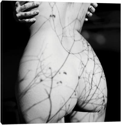 On My Body Canvas Art Print