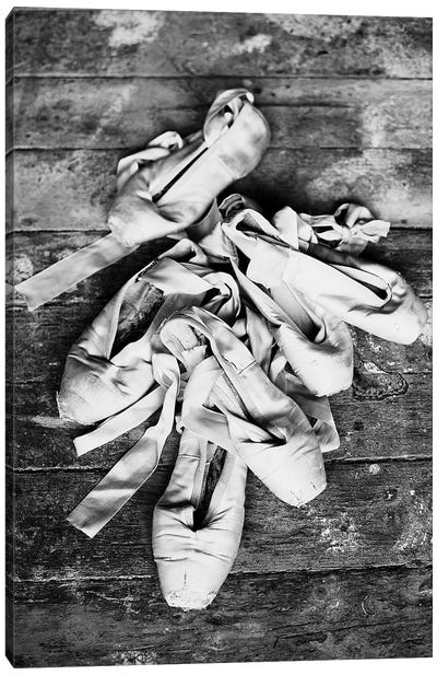 Ballet Slippers Canvas Art Print