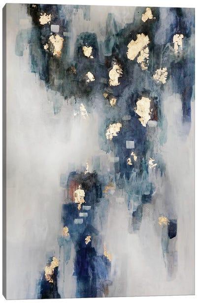 Star Dust Canvas Art Print