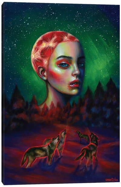 Dark Side Canvas Art Print