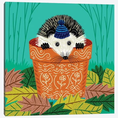A Hedgehog's Home Canvas Print #OLV1} by Oliver Lake Canvas Artwork