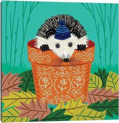 A Hedgehog's Home Canvas Art Print