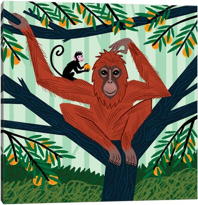 The Orangutan In The Orange Trees Canvas Art Print