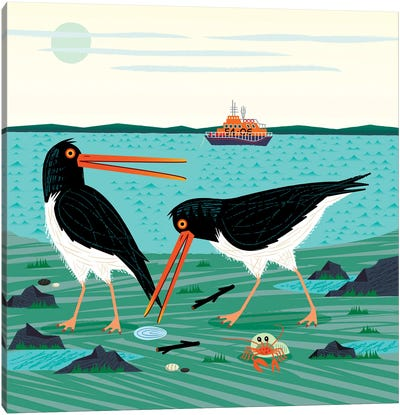 The Oystercatchers Canvas Art Print