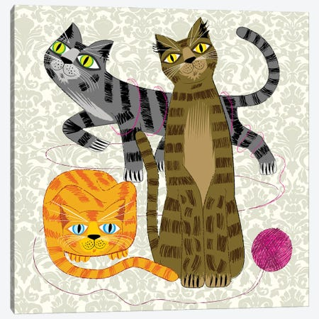 Three Cool Cats 3-Piece Canvas #OLV84} by Oliver Lake Canvas Art Print