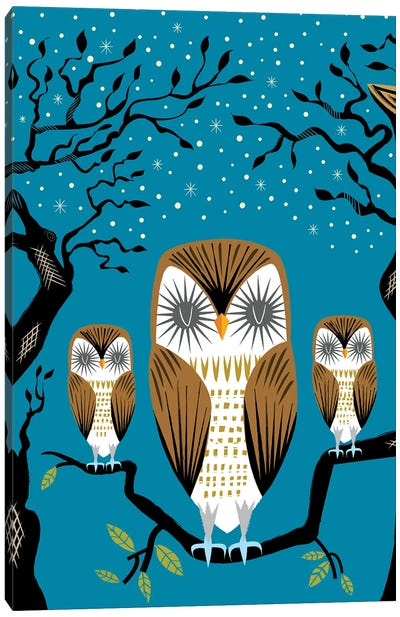 Three Lazy Owls Canvas Art Print