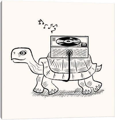 Tortoise Wax Canvas Art Print