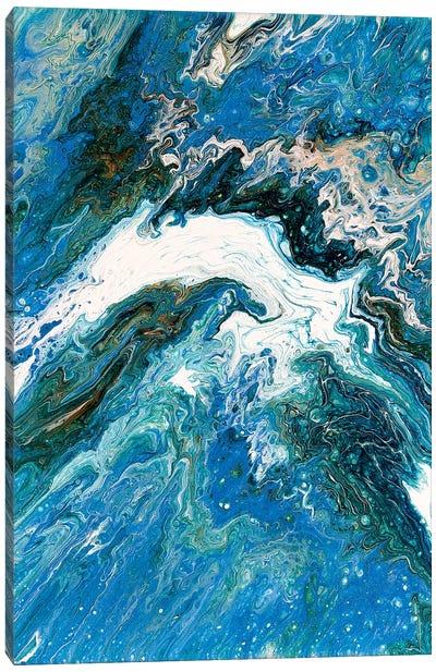 Dolphin Leap Canvas Art Print