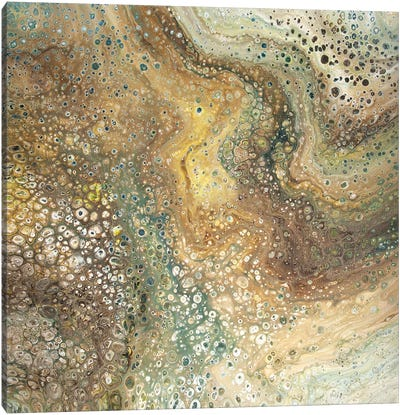 Sand Storm Canvas Art Print