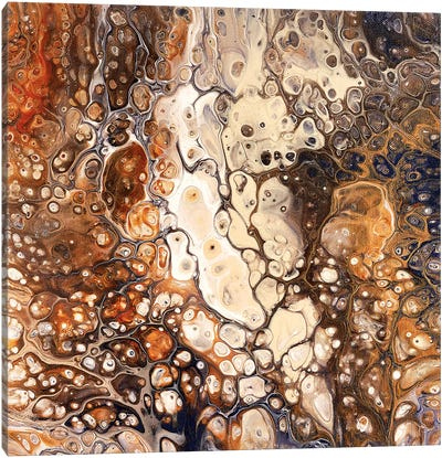 Falling Rocks Canvas Art Print