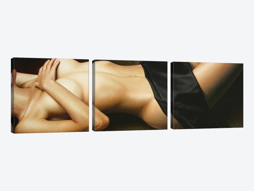 Nudity II by Omar Ortiz 3-piece Canvas Print