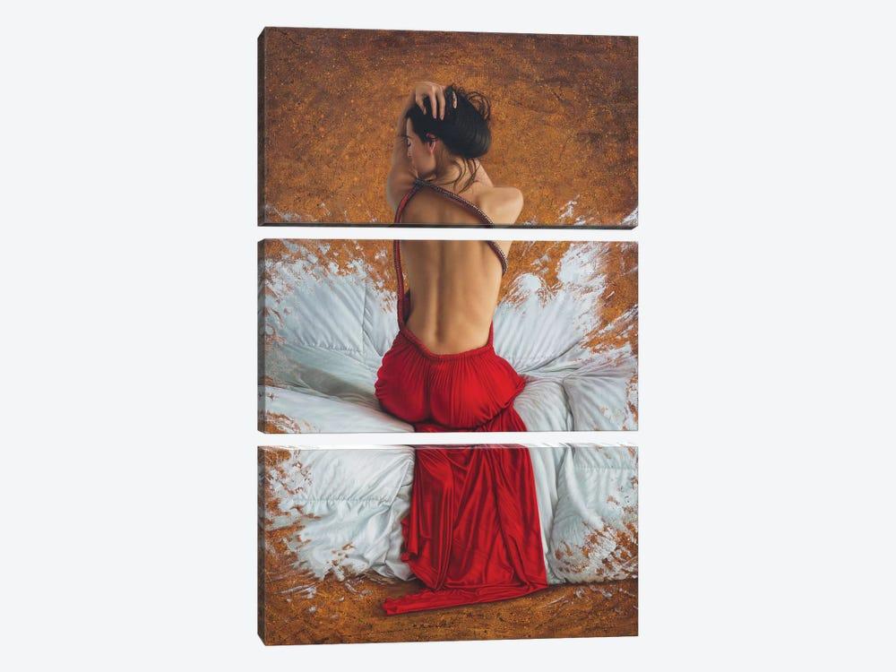 Scarlet Heart by Omar Ortiz 3-piece Art Print