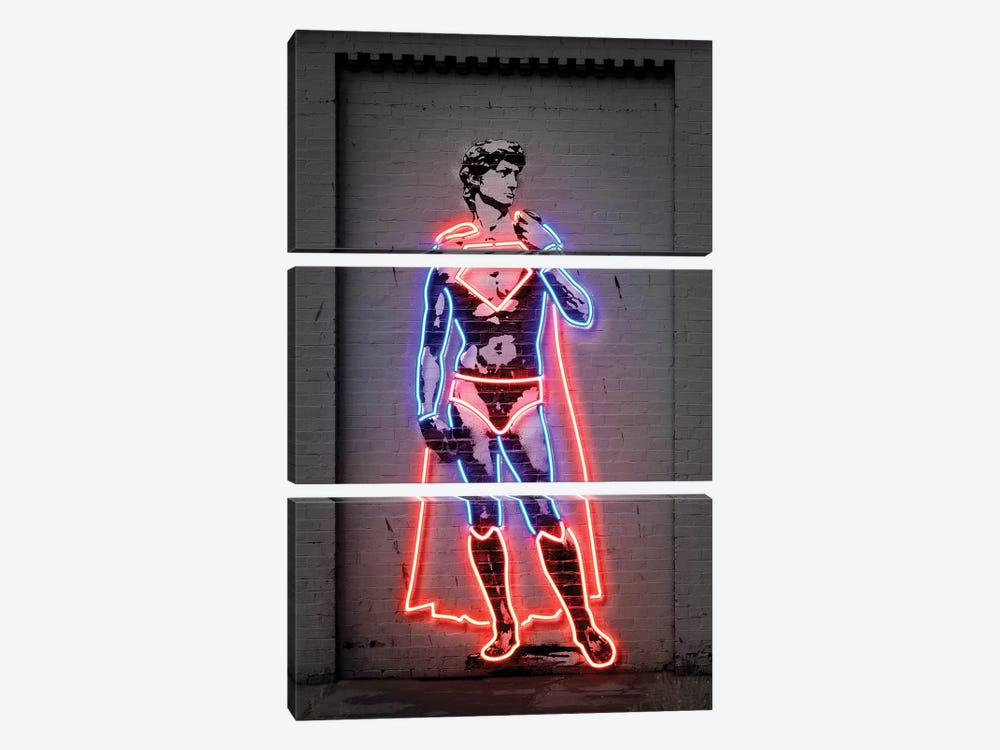 David by Octavian Mielu 3-piece Canvas Art