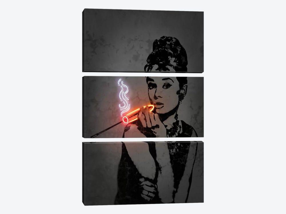 Audrey by Octavian Mielu 3-piece Canvas Art Print