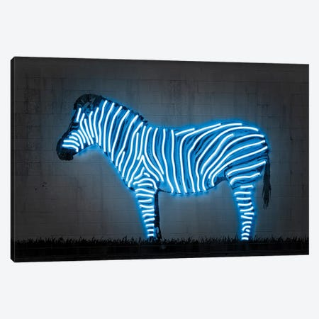 Zebra Canvas Print #OMU201} by Octavian Mielu Canvas Artwork