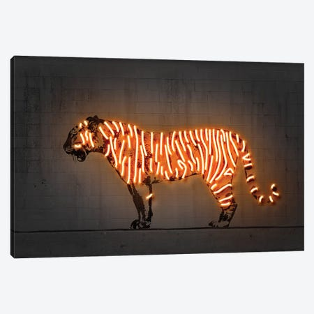 Tiger Canvas Print #OMU202} by Octavian Mielu Canvas Wall Art