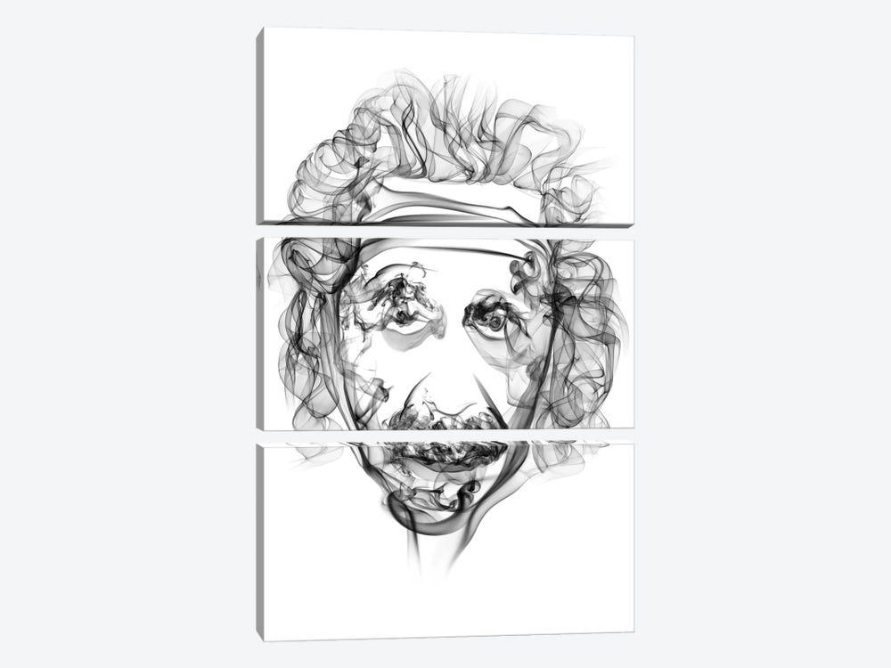 Albert Einstein by Octavian Mielu 3-piece Canvas Artwork