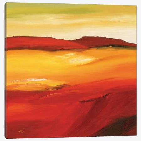Australian Landscape I Canvas Print #OOT1} by André Schrooten Canvas Art Print