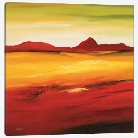 Australian Landscape II Canvas Print #OOT2} by André Schrooten Canvas Art Print