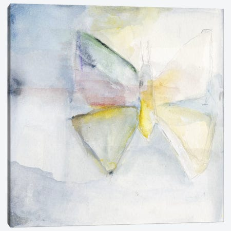 Butterfly II Canvas Print #OPP107} by Michelle Oppenheimer Art Print