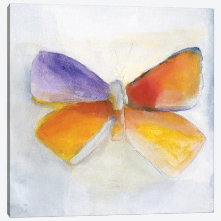 Butterfly IV Canvas Print #OPP109} by Michelle Oppenheimer Canvas Wall Art