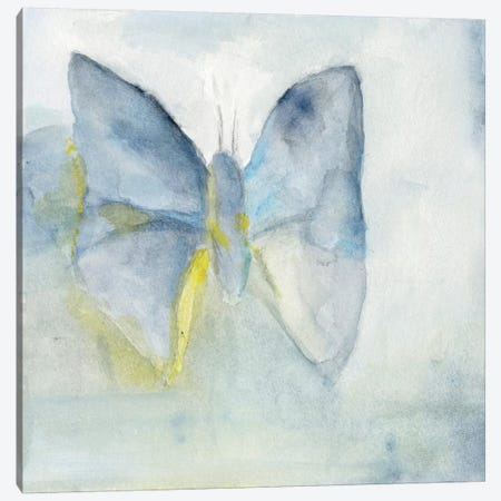 Butterfly V Canvas Print #OPP110} by Michelle Oppenheimer Canvas Print