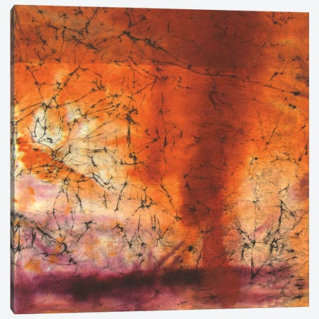Copper Sky Canvas Print #OPP16} by Michelle Oppenheimer Canvas Print