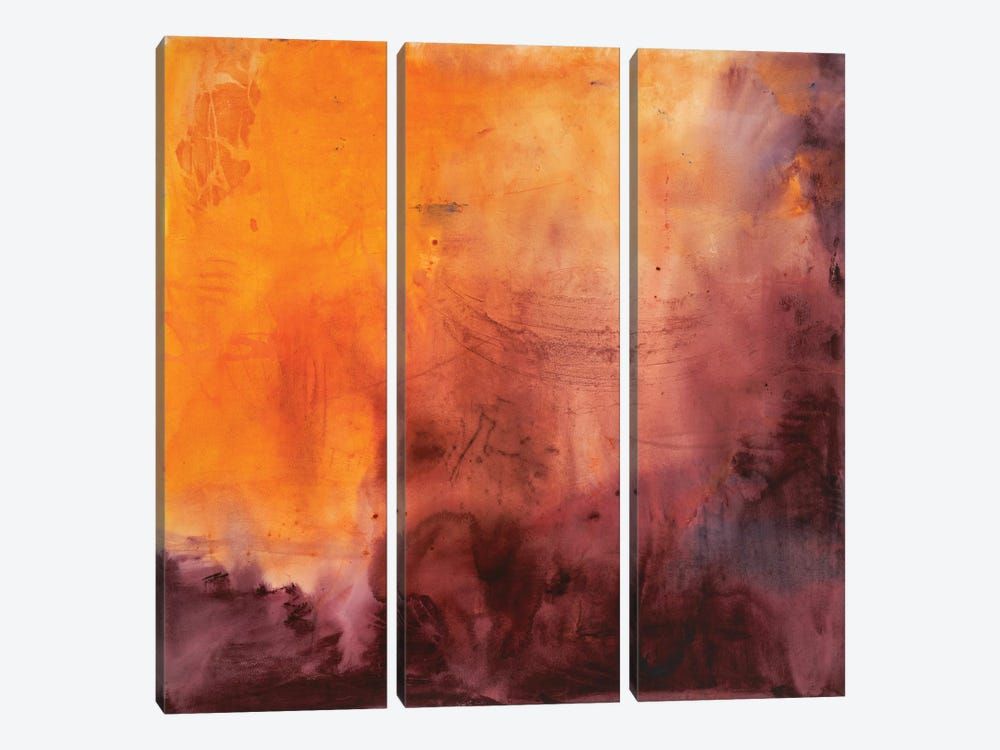 Dazzling by Michelle Oppenheimer 3-piece Canvas Wall Art