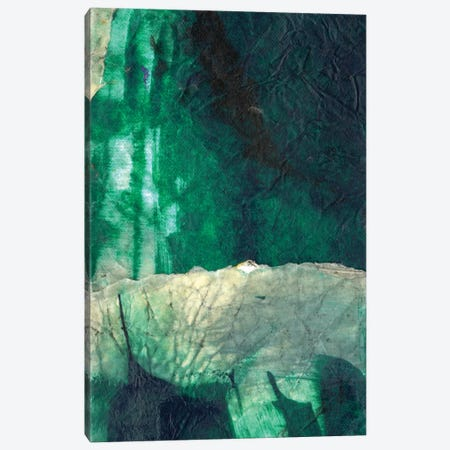 Emerald Flight Canvas Print #OPP27} by Michelle Oppenheimer Canvas Art