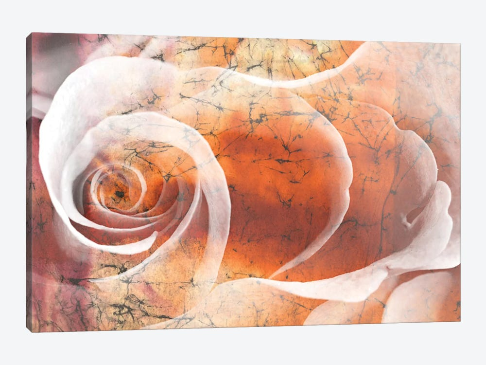 Floral Collaboration II 1-piece Canvas Art Print