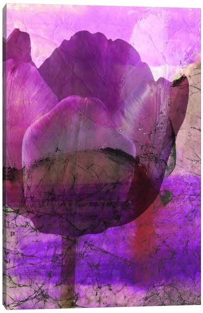 Floral Collaboration IV Canvas Art Print