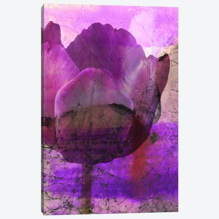 Floral Collaboration IV Canvas Print #OPP33} by Michelle Oppenheimer Canvas Wall Art