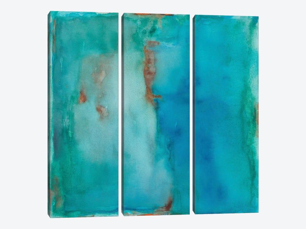 Irrigation by Michelle Oppenheimer 3-piece Canvas Artwork
