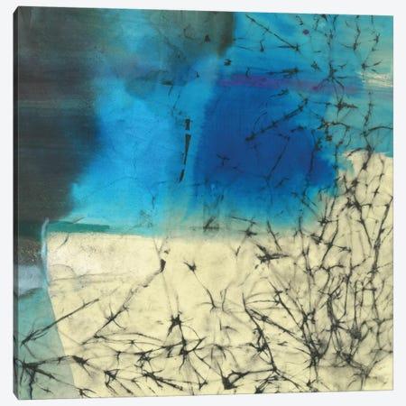 Atmospheric Breeze Canvas Print #OPP4} by Michelle Oppenheimer Canvas Art Print