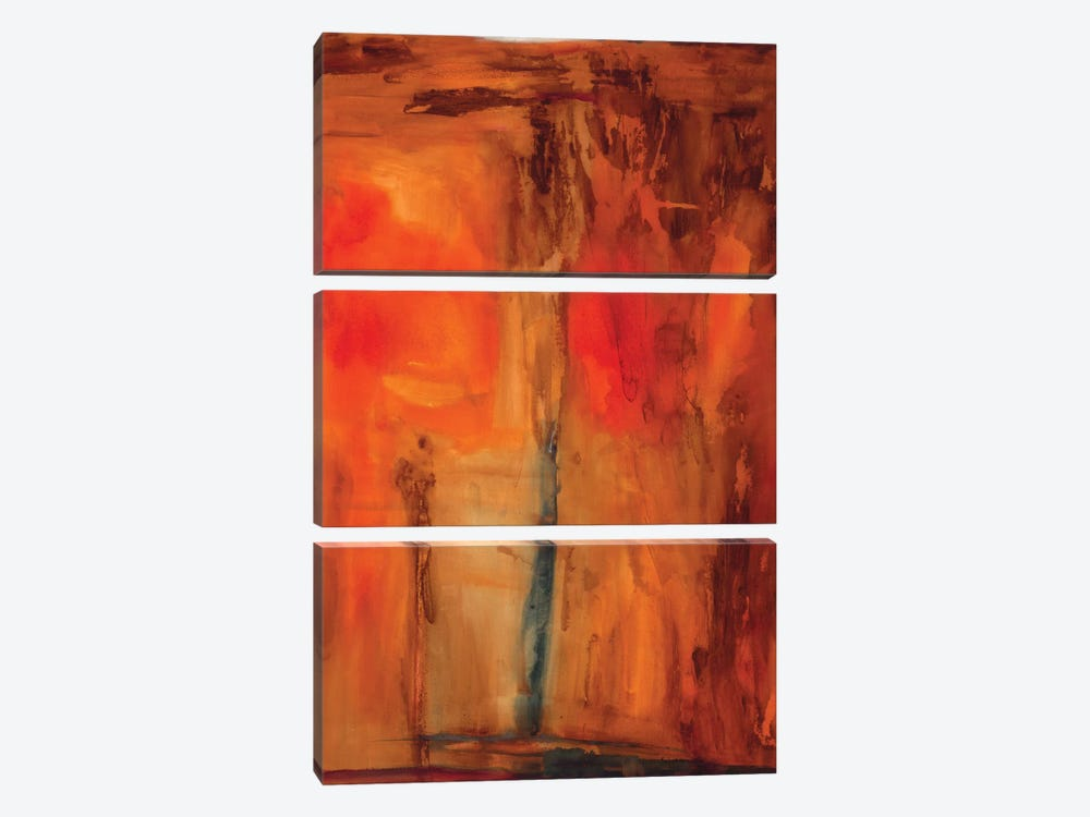 Orange Glow by Michelle Oppenheimer 3-piece Canvas Print